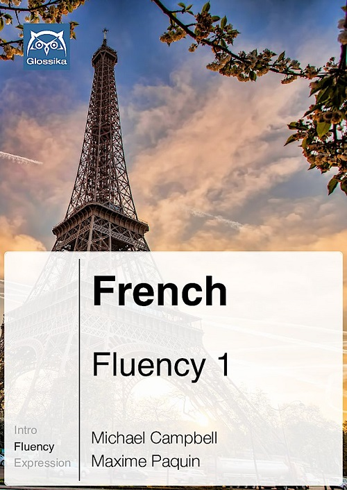 french fluency 123 course best way to learn french