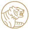 虎 hǔ 2022