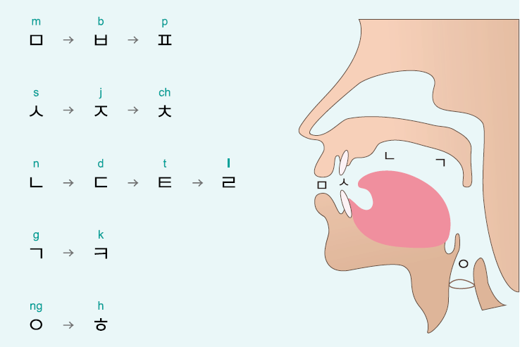 learn korean language guide to pronunciation rules